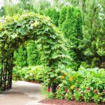 Ekologia w ogrodzie. Moda na ogród ekologiczny