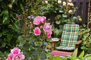 fotel ogród relaks wypoczynek