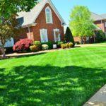 Jak dbać o trawnik, by przez cały sezon był powodem do dumy?
