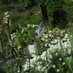 Wiosenne porządki w ogrodzie – lista zadań. Jak zadbać o ogród wiosną?