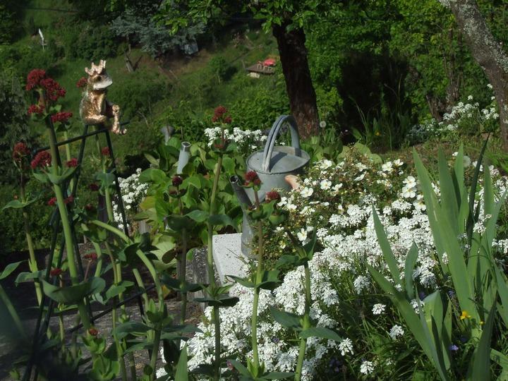 wiosna ogród porządki