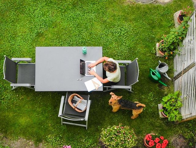 biuro w ogrodzie