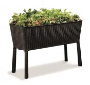 Donica Easy Grow Rattan Keter